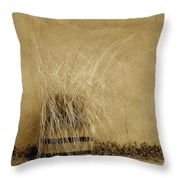 Silver City Still Life Throw Pillow by FeVa  Fotos