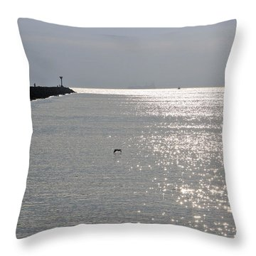 Silver Throw Pillow by Heidi Smith