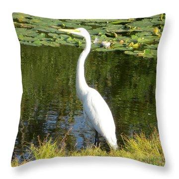 Silver Heron Throw Pillow by Sonali Gangane