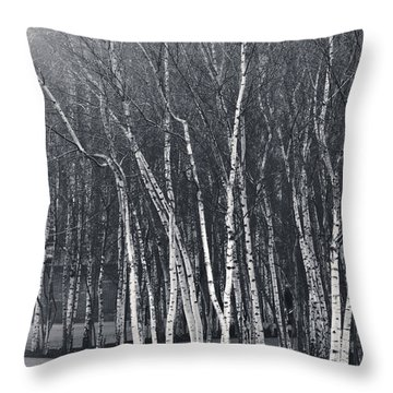 Silver Trees Throw Pillow