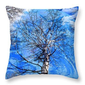 Simple Life Throw Pillow by Robert Orinski