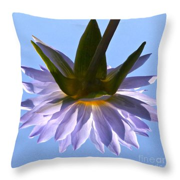 Simple Reflection Throw Pillow