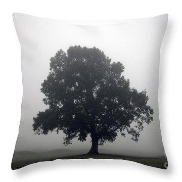 Simplicity Throw Pillow by Amanda Barcon