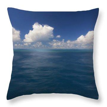 Simplicity Great Barrier Reef Throw Pillow