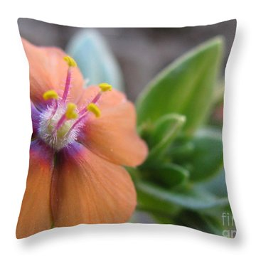 Throw Pillow featuring the photograph Simplistic Photography by Tina Marie