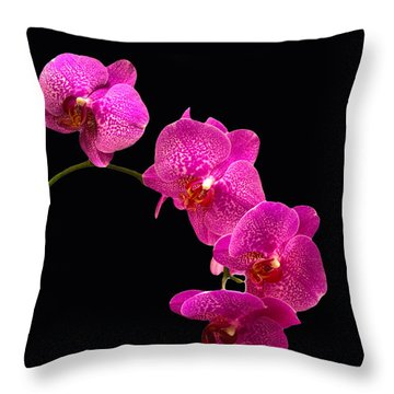 Throw Pillow featuring the pyrography Simply Beautiful Purple Orchids by Michael Waters