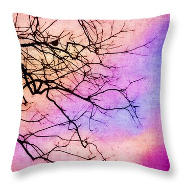 Singing In The Sunshine Throw Pillow by Judi Bagwell