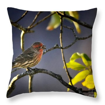 Throw Pillow featuring the photograph Singing In The Morning by Nava Thompson