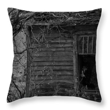 Singing To The Pane  Throw Pillow by The Artist Project