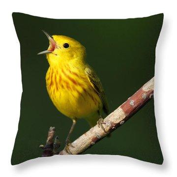 Singing Yellow Warbler Throw Pillow