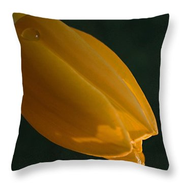 Single Again Throw Pillow