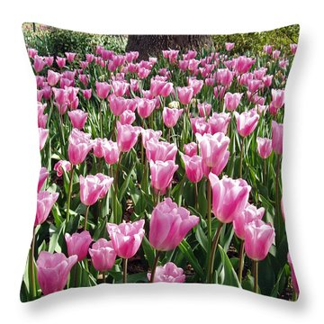 Throw Pillow featuring the photograph Single Late Cum Laude Field by Darleen Stry