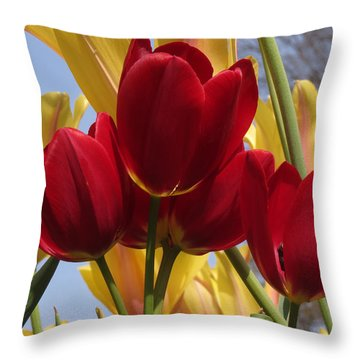 Throw Pillow featuring the photograph Single Late Red Georgette by Darleen Stry