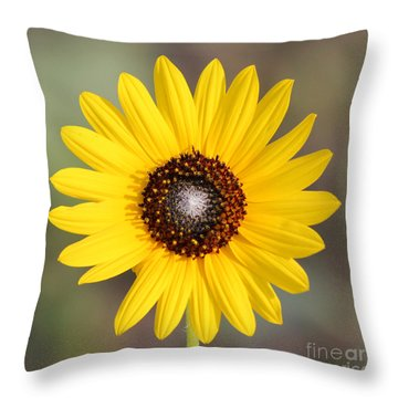 Single Susan Squared Throw Pillow