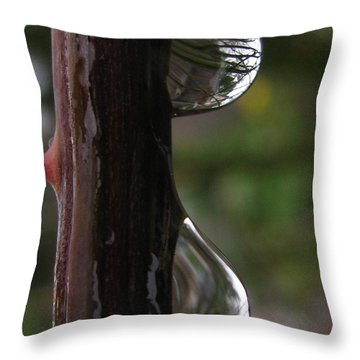 Sizable Throw Pillow by Tina Marie
