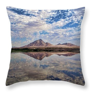 Throw Pillow featuring the photograph Skies Illusion by Tammy Espino