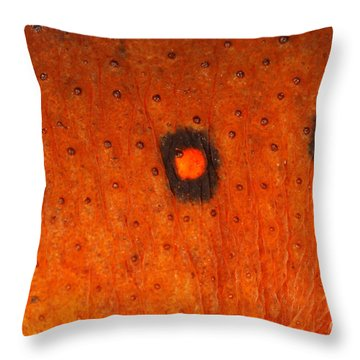 Skin Of Eastern Newt Throw Pillow by Ted Kinsman