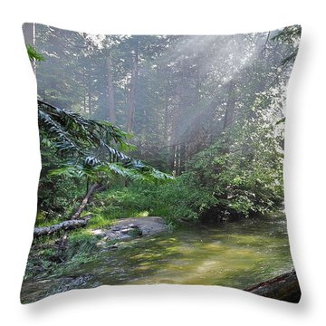 Slanting Sunlight On River Throw Pillow by Kirsten Giving