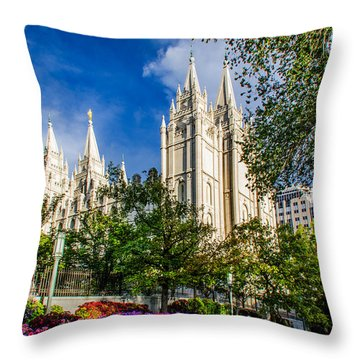 Slc Nw View Throw Pillow by La Rae  Roberts