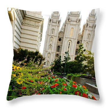 Slc Slant Throw Pillow by La Rae  Roberts