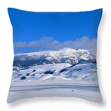 Throw Pillow featuring the photograph Sleeping Indian by Eric Tressler