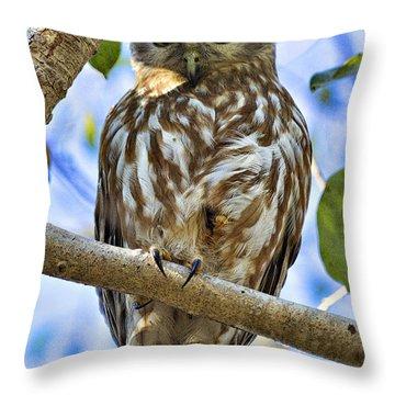 Sleepy Eyes Throw Pillow by Douglas Barnard