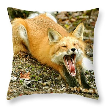 Throw Pillow featuring the photograph Sleepy Fox by Rick Frost