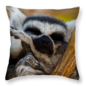 Lemur Throw Pillows