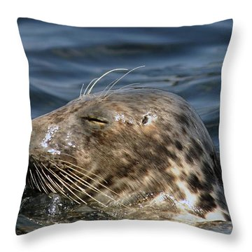 Sleepy Seal Throw Pillow