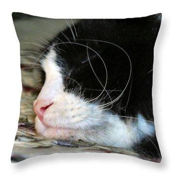 Sleepytime Throw Pillow by Art Dingo