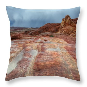 Slickrock Throw Pillow by Bob Christopher