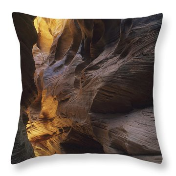 Slot Canyon Throw Pillow