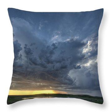 Slough Pond And Crop Throw Pillow by Mark Duffy