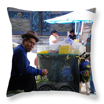 Slow Sunday Throw Pillow by Al Bourassa