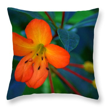 Throw Pillow featuring the photograph Small Orange Flower by Tikvah's Hope