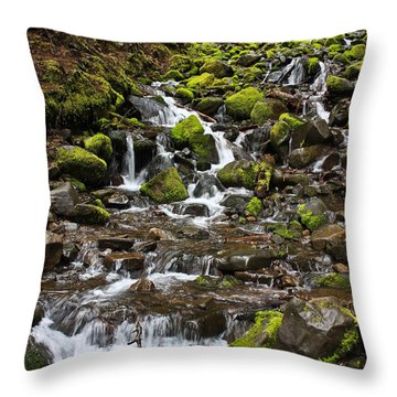 Small Waterfall Throw Pillow by Mark Alder
