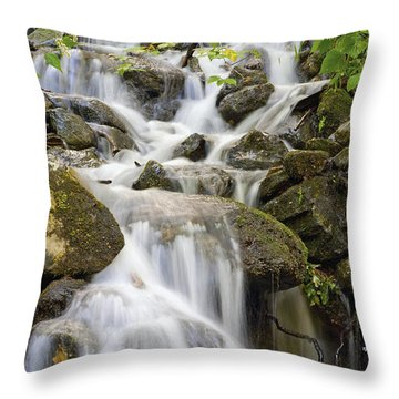 Small Waterfalls And Brook West Bolton Throw Pillow by David Chapman