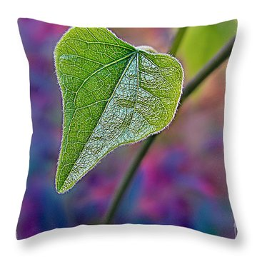 Smilax Throw Pillow by Judi Bagwell