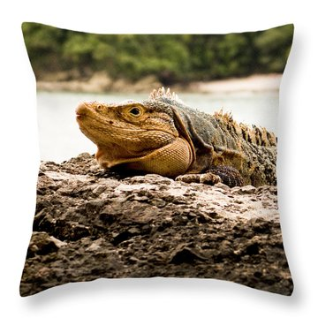 Smiley  Costa Rica Throw Pillow