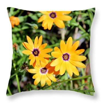 Smiling At The Sun Throw Pillow by Jo Sheehan