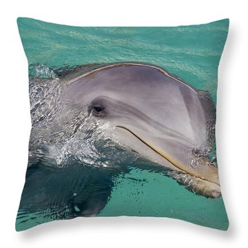 Smiling Atlantic Bottlenose Dolphin Throw Pillow by Dave Fleetham