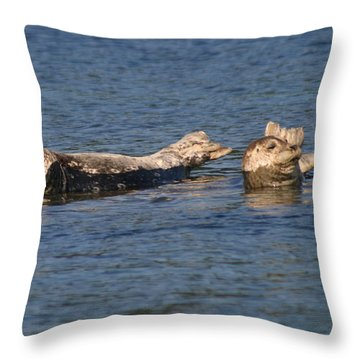Smiling Seals Of Puget Sound Throw Pillow by Kym Backland