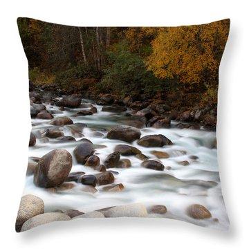 Smokey Water Throw Pillow