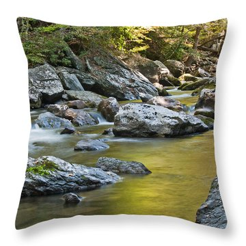 Smoky Mountain Streams II Throw Pillow