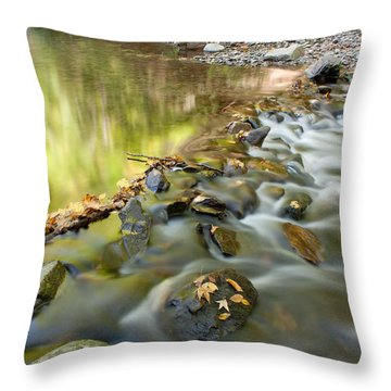 Smoky Mountain Streams Iv Throw Pillow