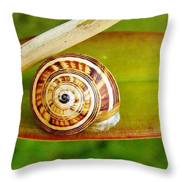 Throw Pillow featuring the photograph Snail On Leaf by Werner Lehmann