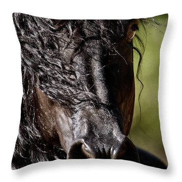 Snorting Good Looks D6714 Throw Pillow by Wes and Dotty Weber