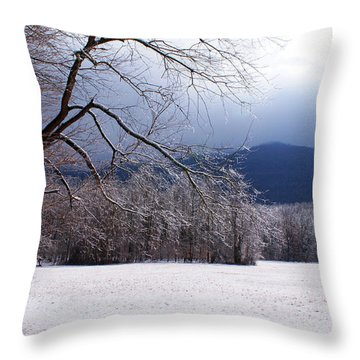 Throw Pillow featuring the photograph Snow And Ice by Paul Mashburn