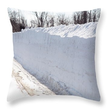 Snow By The Roadside Throw Pillow by Ted Kinsman