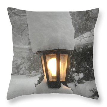 Snow Capped Throw Pillow